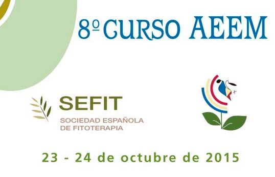 8 curso AEEM SEID Lab